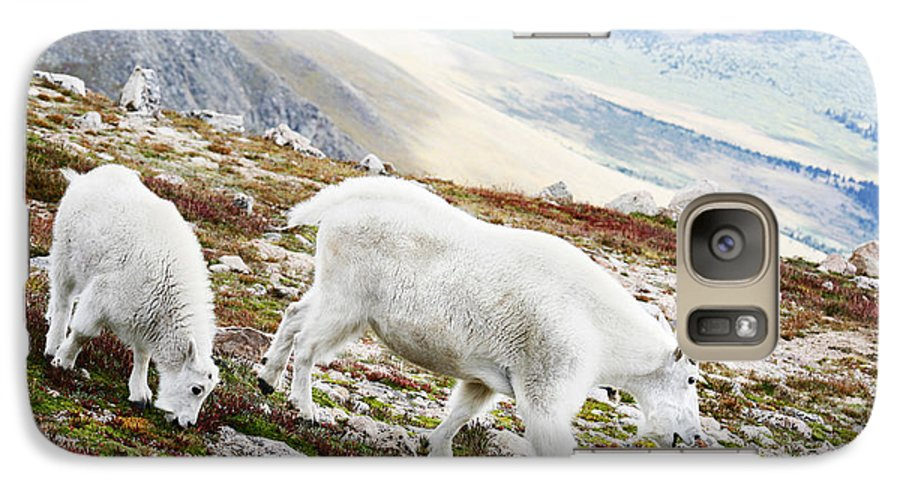 Mountain Galaxy S7 Case featuring the photograph Mountain Goats 1 by Marilyn Hunt