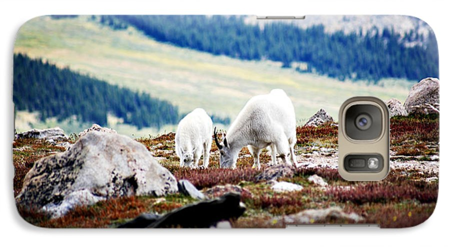 Animal Galaxy S7 Case featuring the photograph Mountain Goats 2 by Marilyn Hunt