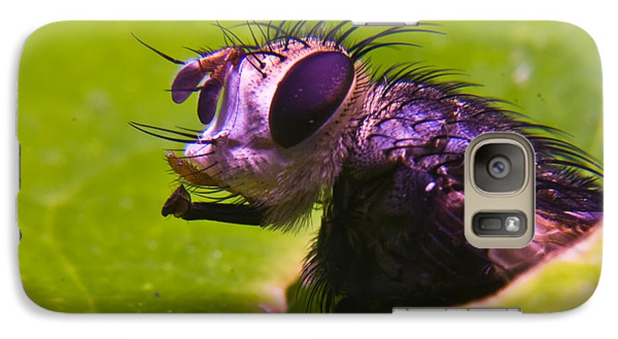 Fly Galaxy S7 Case featuring the photograph Mr. Fly by Douglas Barnett