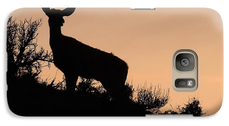 Deer Galaxy S7 Case featuring the photograph Mule Deer Silhouetted Against Sunset Ridge by Max Allen
