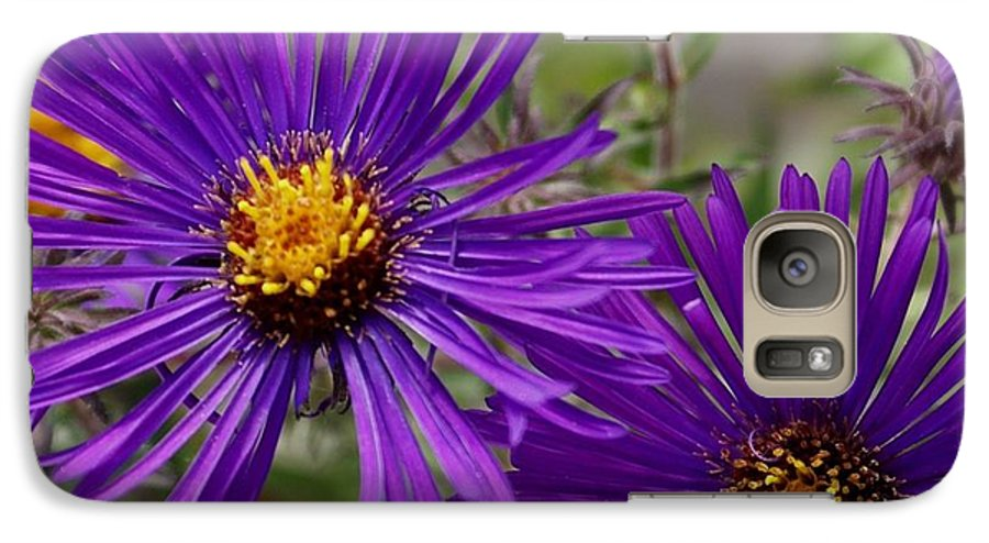 Plant Galaxy S7 Case featuring the painting My Purple Ways by Debbie May