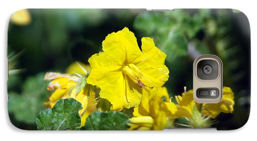 Flower Galaxy S7 Case featuring the photograph Nasty Weed by Margaret Fortunato