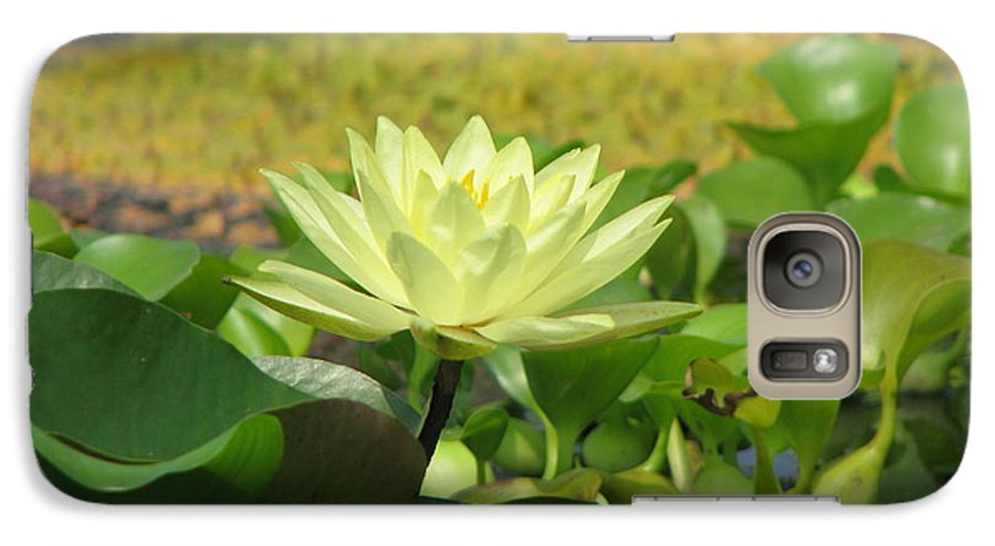 Nature Galaxy S7 Case featuring the photograph Nature by Amanda Barcon