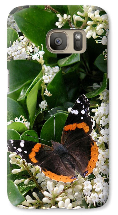 Nature Galaxy S7 Case featuring the photograph Nature In The Wild - A Sweet Stop by Lucyna A M Green