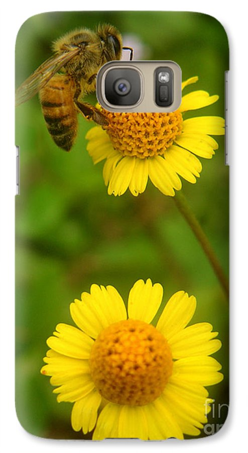 Nature Galaxy S7 Case featuring the photograph Nature In The Wild - Hanging In There by Lucyna A M Green