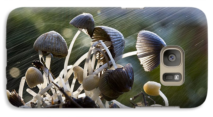 Mushrooms Rain Showers Umbrellas Nature Fungi Galaxy S7 Case featuring the photograph Nature by Avalon Fine Art Photography