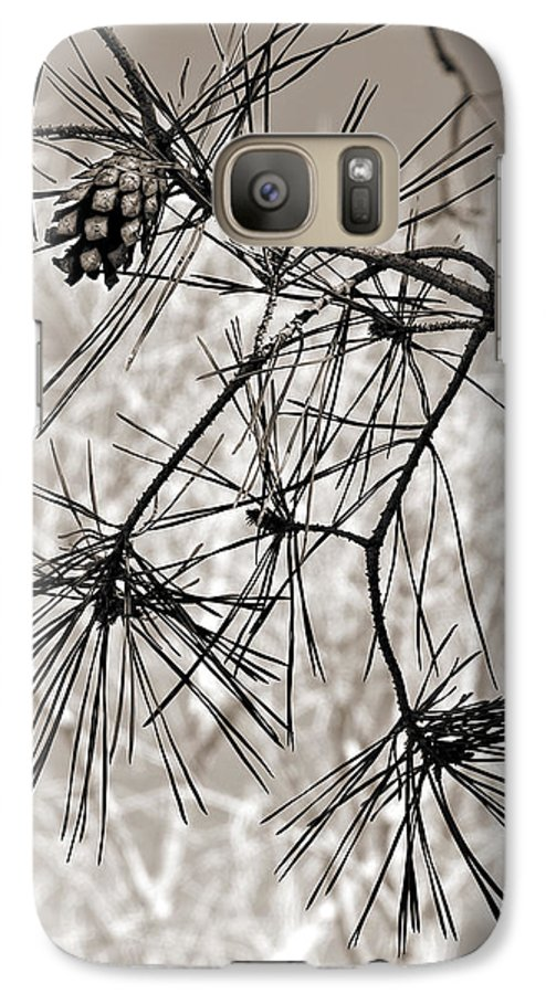 Tree Galaxy S7 Case featuring the photograph Needles Everywhere by Marilyn Hunt