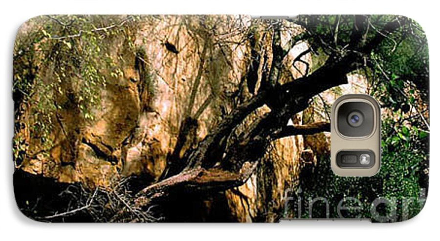 Trees Galaxy S7 Case featuring the photograph Old Tree by Kathy McClure