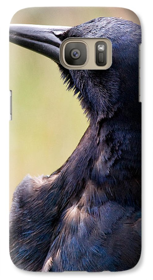 Bird Galaxy S7 Case featuring the photograph On Alert by Christopher Holmes