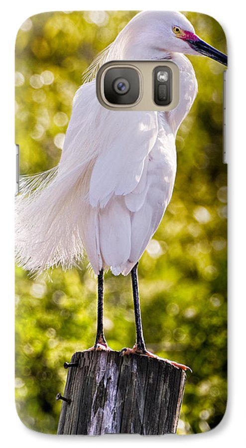 snowy Egret Galaxy S7 Case featuring the photograph On Watch by Christopher Holmes