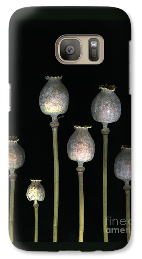 Scanography Galaxy S7 Case featuring the photograph Opiates by Christian Slanec