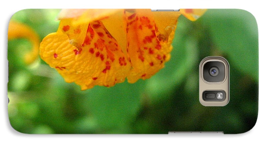 Flower Galaxy S7 Case featuring the photograph Orange Flower by Melissa Parks
