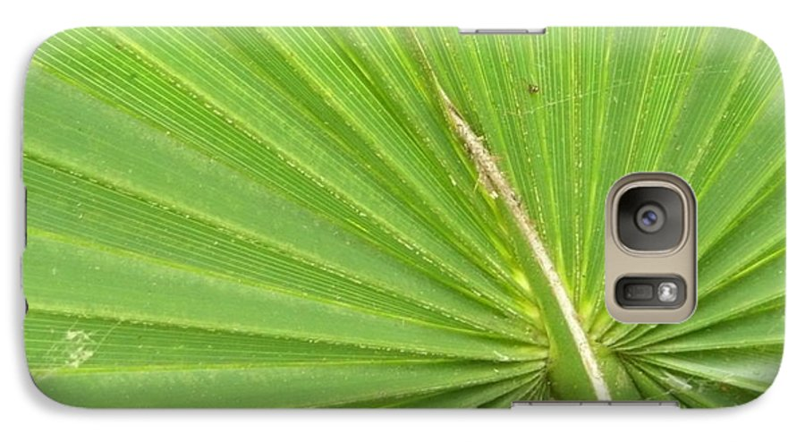Palmetto Galaxy S7 Case featuring the photograph Palmetto II by Kathy Schumann