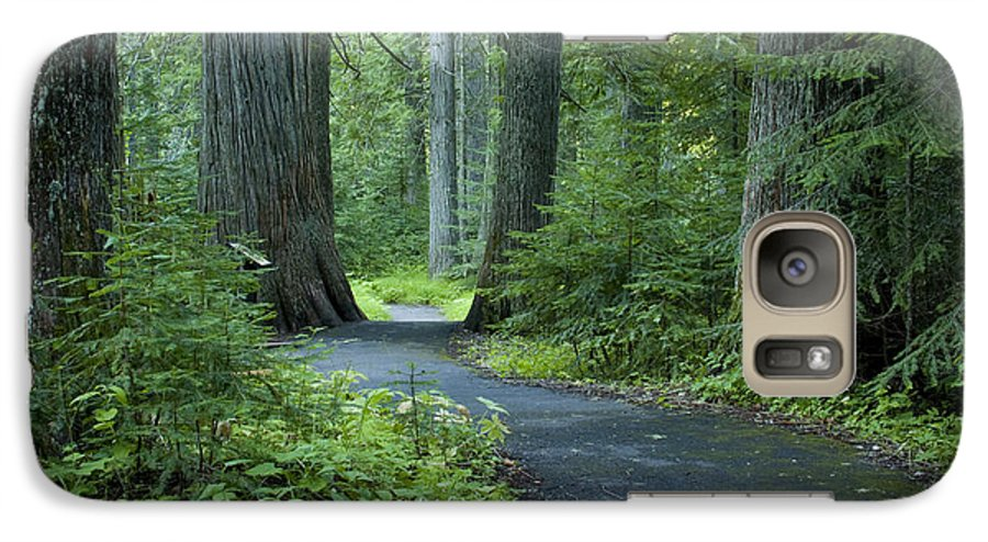 Grove Galaxy S7 Case featuring the photograph Path Through The Cedars by Idaho Scenic Images Linda Lantzy