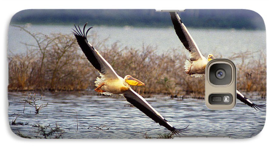 Birds Galaxy S7 Case featuring the photograph Pelicans In Flight by Carl Purcell