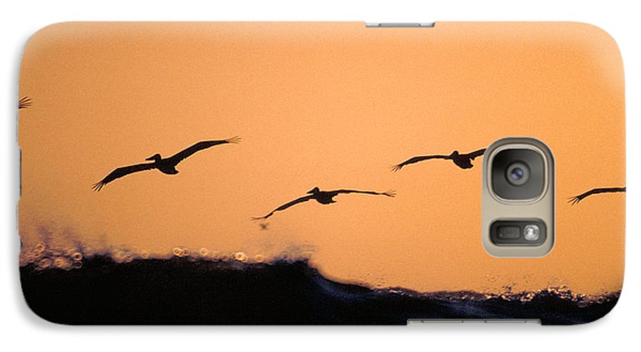 Pelicans Galaxy S7 Case featuring the photograph Pelicans Over The Pacific by Michael Mogensen