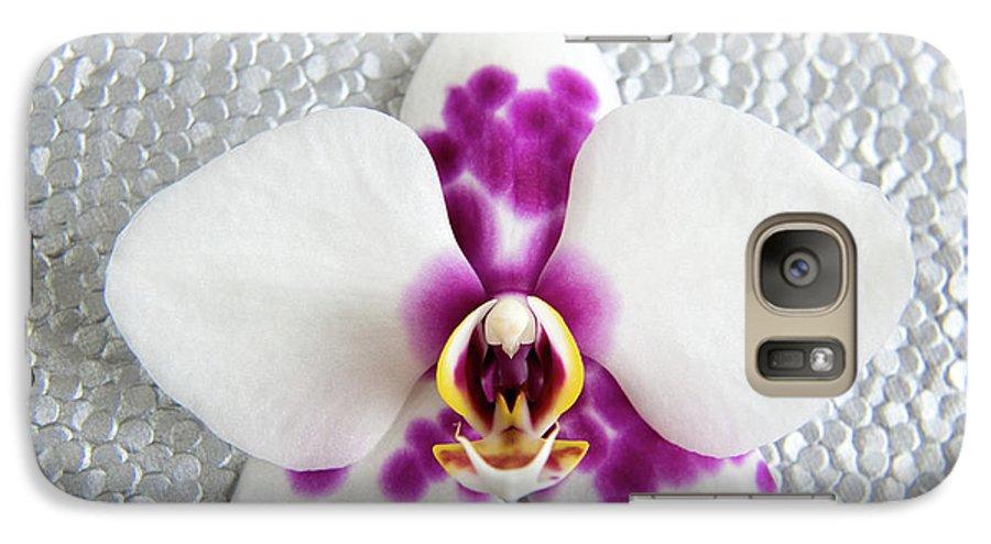 Nature Galaxy S7 Case featuring the photograph Phalaenopsis Yu Pin Panda by Julia Hiebaum