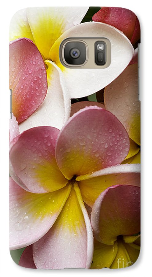 Pink Frangipani Galaxy S7 Case featuring the photograph Pink Frangipani by Avalon Fine Art Photography