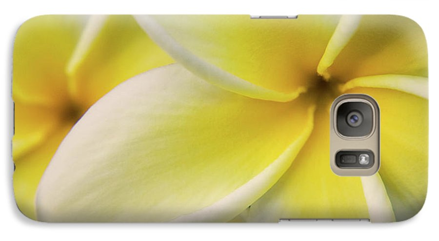 Nature Galaxy S7 Case featuring the photograph Plumeria Flowers by Julia Hiebaum