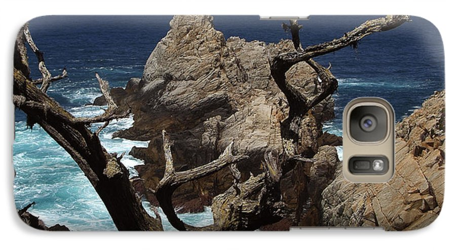 Carmel Galaxy S7 Case featuring the photograph Point Lobos Rocks And Branches by Charlene Mitchell