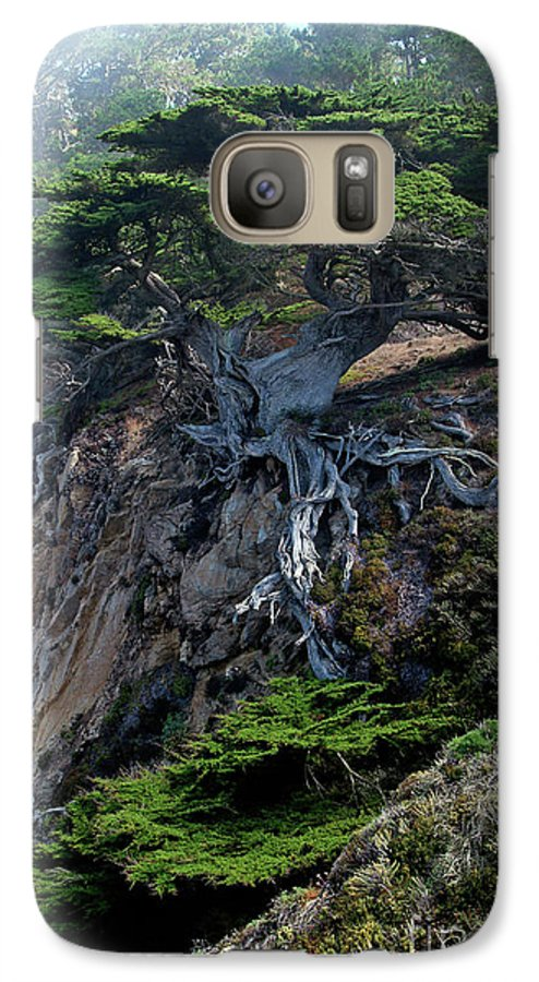 Landscape Galaxy S7 Case featuring the photograph Point Lobos Veteran Cypress Tree by Charlene Mitchell