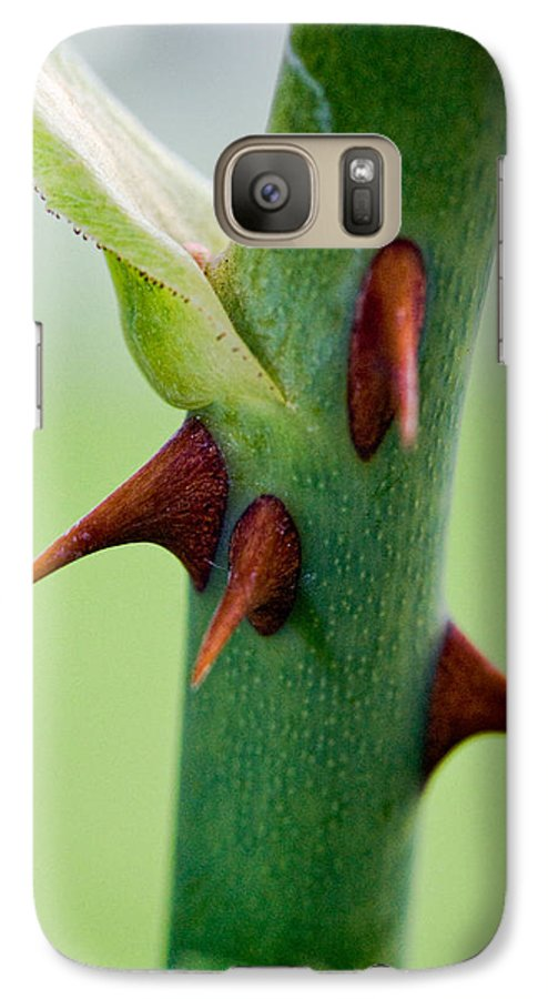 Thorns Galaxy S7 Case featuring the photograph Pointed Personality by Christopher Holmes