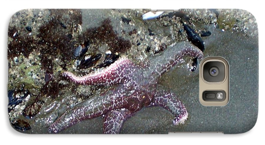 Starfish Galaxy S7 Case featuring the photograph Poor Little Starfish by Elizabeth Klecker
