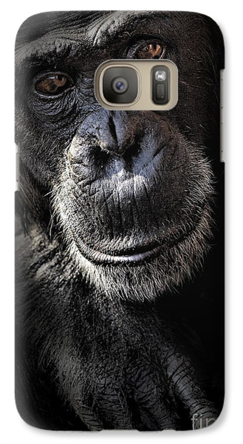 Chimp Galaxy S7 Case featuring the photograph Portrait Of A Chimpanzee by Avalon Fine Art Photography
