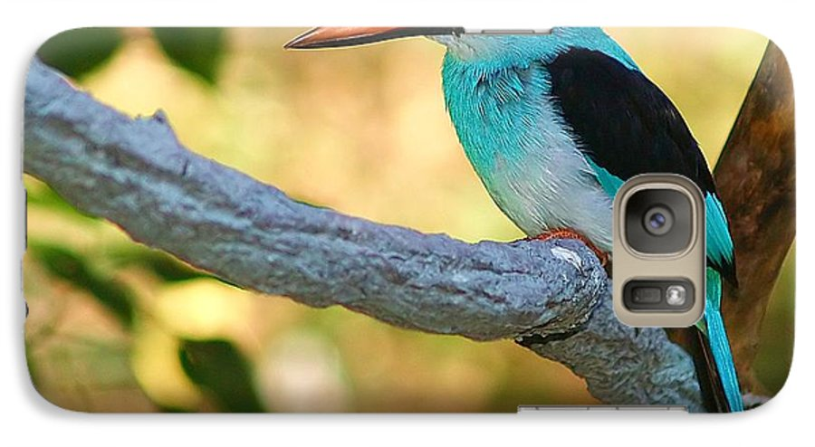 Kingfisher Galaxy S7 Case featuring the photograph Pretty Bird by Gaby Swanson
