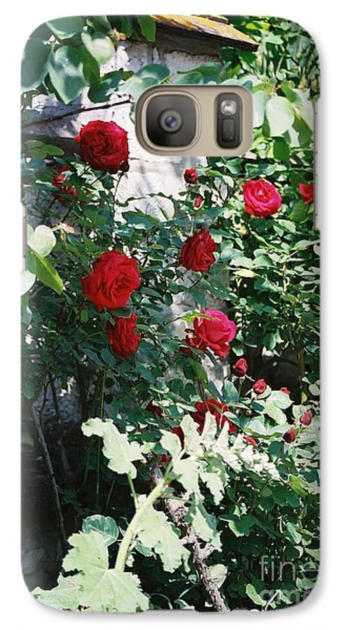 Floral Galaxy S7 Case featuring the photograph Provence Red Roses by Nadine Rippelmeyer