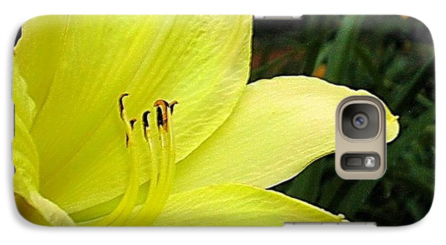 Fine Art Photography Galaxy S7 Case featuring the photograph Pure Sunshine by Patricia Griffin Brett