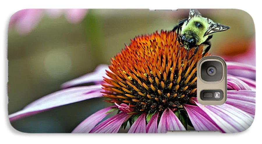 Macro Galaxy S7 Case featuring the photograph Purple Cone Flower And Bee by Al Mueller