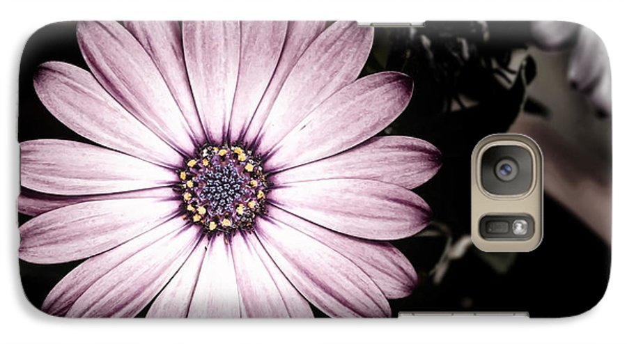 Flower Galaxy S7 Case featuring the photograph Purple Flower by Al Mueller