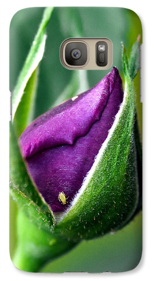 Rose Galaxy S7 Case featuring the photograph Purple Rose Bud by Christopher Holmes