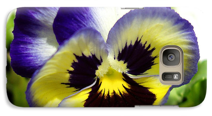 Pansy Galaxy S7 Case featuring the photograph Purple White And Yellow Pansy by Nancy Mueller