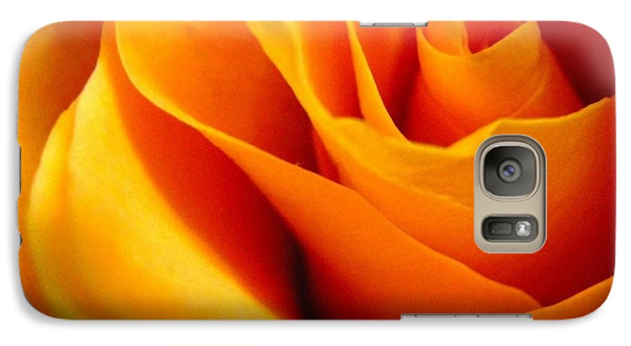 Rose Galaxy S7 Case featuring the photograph Queen Rose by Rhonda Barrett