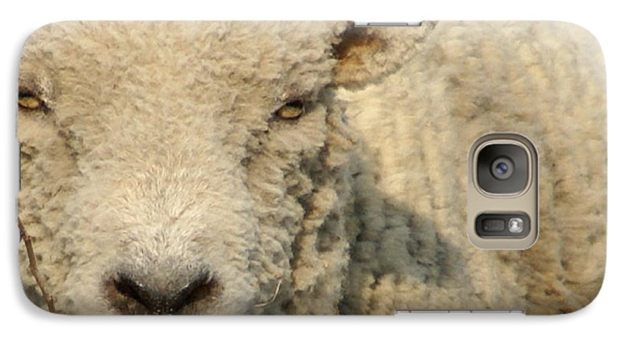 Farm Animal Galaxy S7 Case featuring the photograph Ramsy - Debbie-may by Debbie May