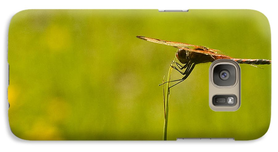 Dragonfly Galaxy S7 Case featuring the photograph Ready For Flight by Douglas Barnett