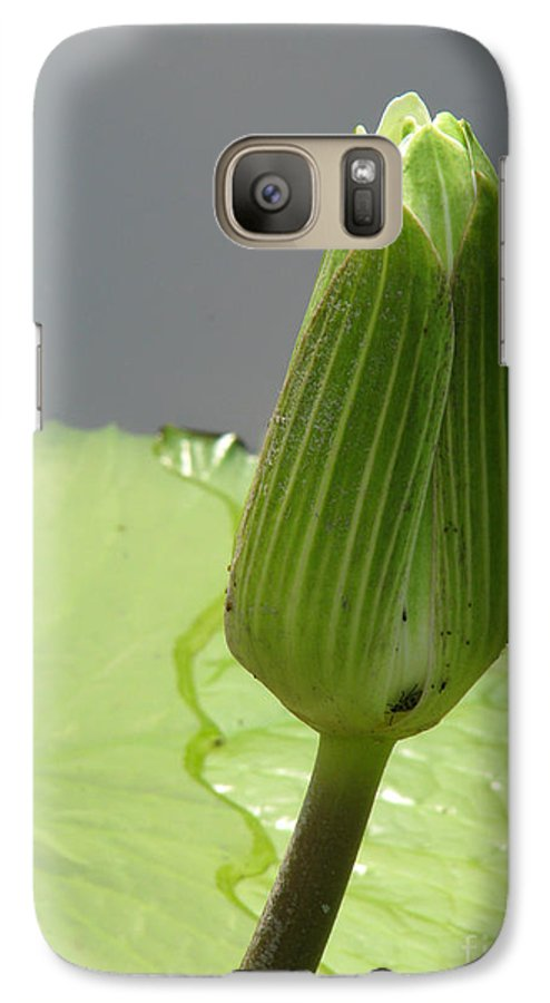 Lilly Galaxy S7 Case featuring the photograph Ready To Bloom by Amanda Barcon