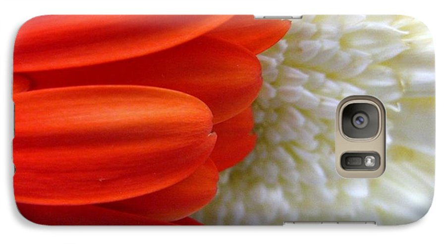 Flowers Galaxy S7 Case featuring the photograph Red And White by Rhonda Barrett