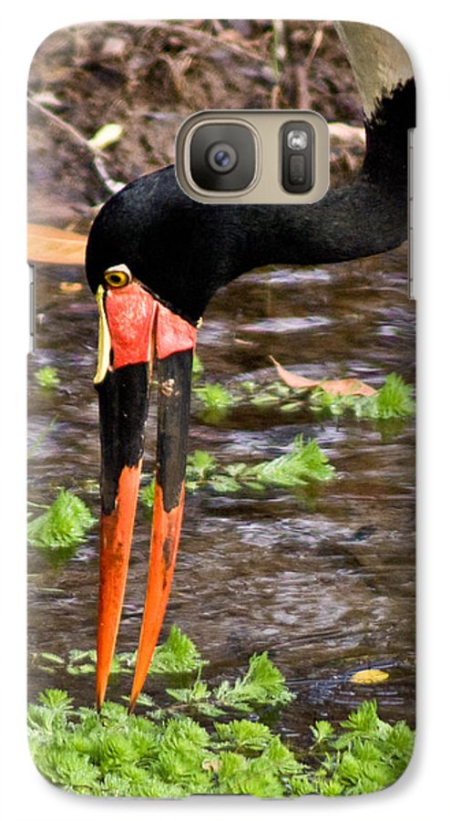 Red Galaxy S7 Case featuring the photograph Red-crowned Crane by Douglas Barnett