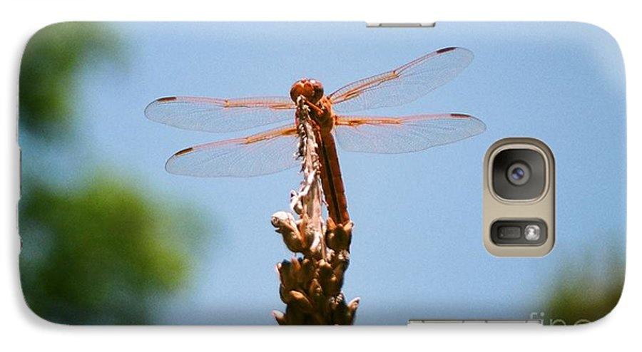 Dragonfly Galaxy S7 Case featuring the photograph Red Dragonfly by Dean Triolo