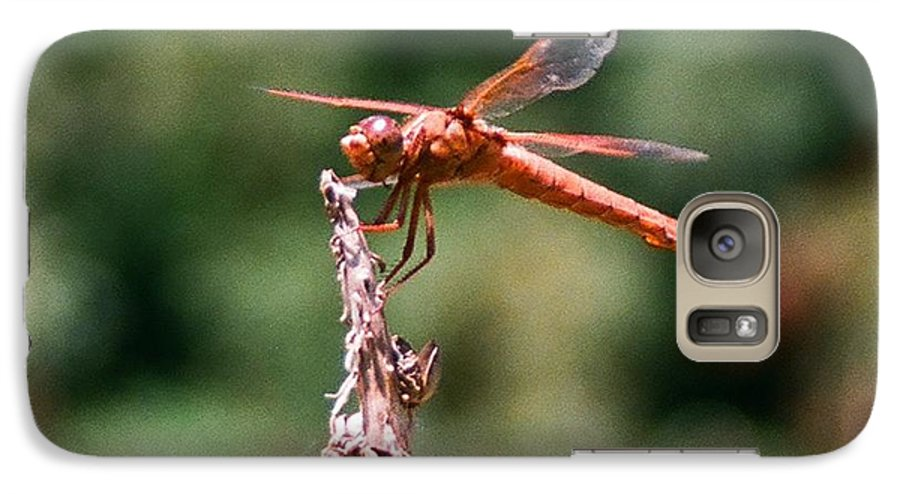 Dragonfly Galaxy S7 Case featuring the photograph Red Dragonfly II by Dean Triolo