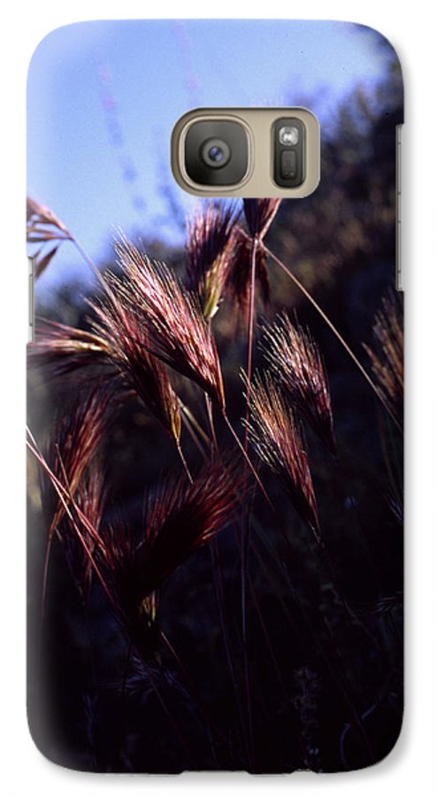 Nature Galaxy S7 Case featuring the photograph Red Feathers by Randy Oberg