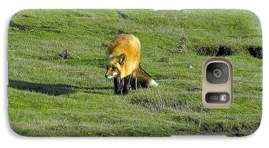 Fox Galaxy S7 Case featuring the photograph Red Fox by Louise Magno