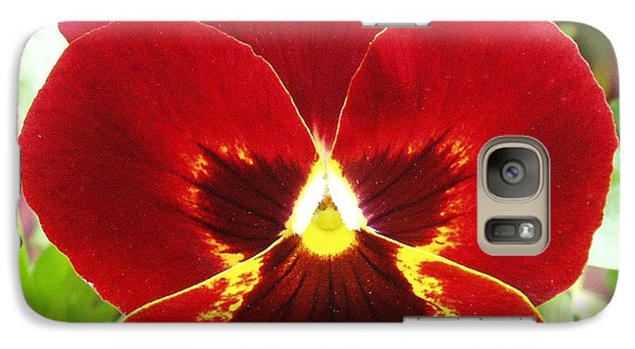 Red Galaxy S7 Case featuring the photograph Red Pansy by Nancy Mueller