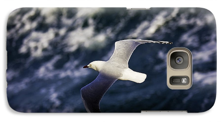 Seagull Galaxy S7 Case featuring the photograph Seagull In Wake by Avalon Fine Art Photography