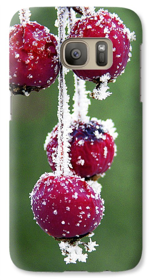Berries Galaxy S7 Case featuring the photograph Seasonal Colors by Marilyn Hunt