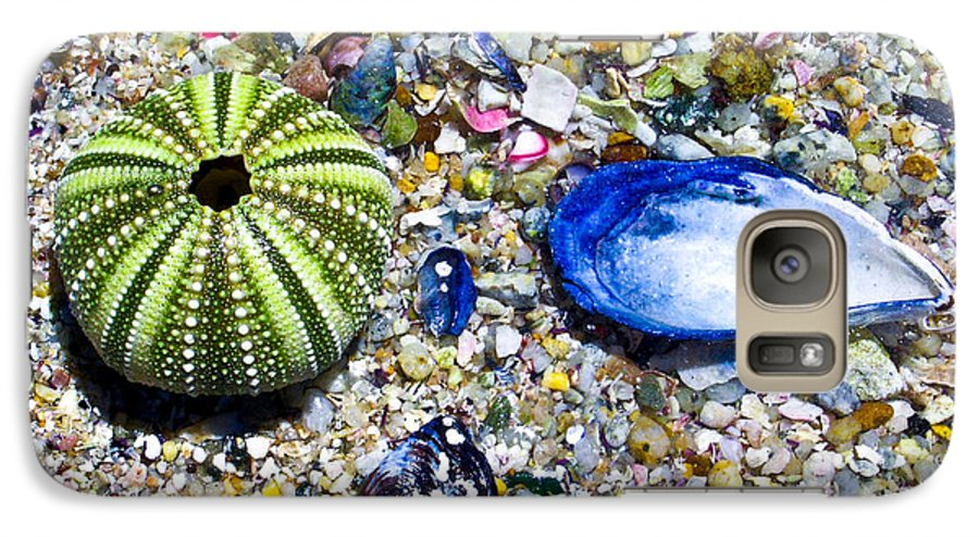 Seashore Galaxy S7 Case featuring the photograph Seashore Colors by Douglas Barnett
