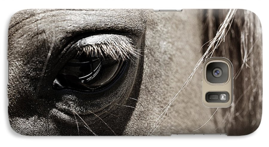 Americana Galaxy S7 Case featuring the photograph Stillness In The Eye Of A Horse by Marilyn Hunt